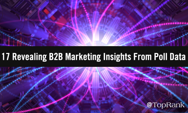 B2B: 17 Insights de Marketing a partir de datos de encuestas