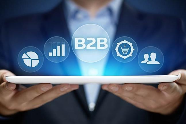 B2B: Cómo elegir la plataforma de eCommerce adecuada