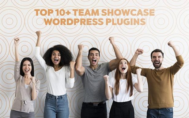 WordPress: Los 10+ mejores plugins para mostrar tu Equipo