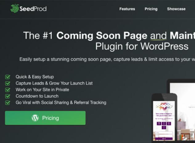 WordPress: 9 Plugins para nuevos propietarios de negocios