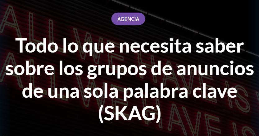 SEM: todo lo que necesitas saber de los SKAG